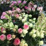 Blooms for an Event